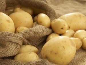 Картофель в помощь