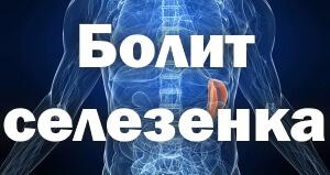 Болит селезенка