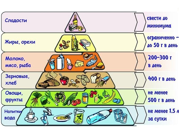Белковое питание