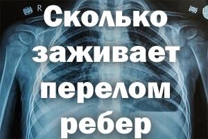 Сколько времени можно быть на больничном с переломом ребра