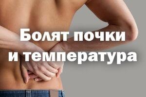Болят почки и температура