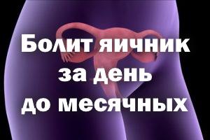 Болит яичник за сутки до месячных