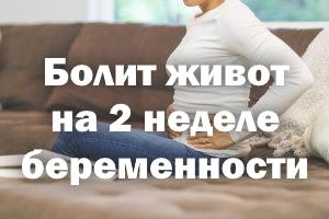 Болит животик на 2 неделе беременности