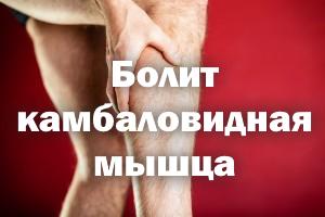 Болит камбаловидная мышца - как быть