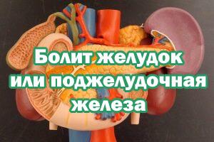 Болит желудок или поджелудочная железа - как узнать